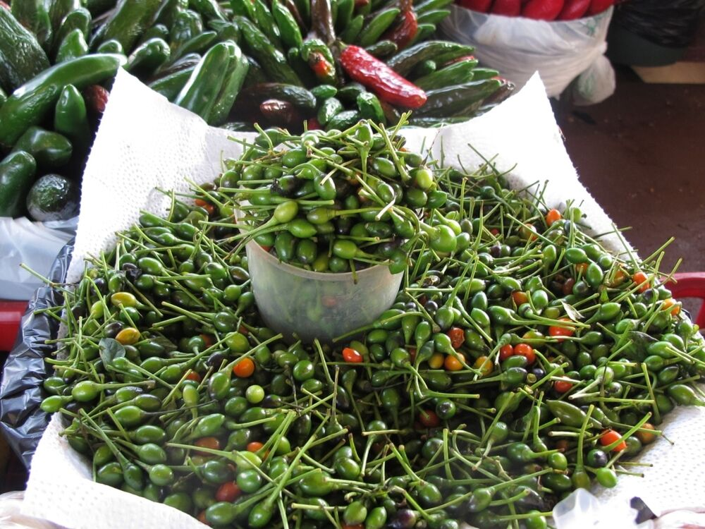 chile pequin peppers