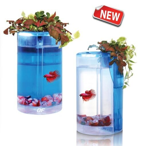 Ocean free betta flora fish tank aquarium hydroponic for Hydroponic fish tank