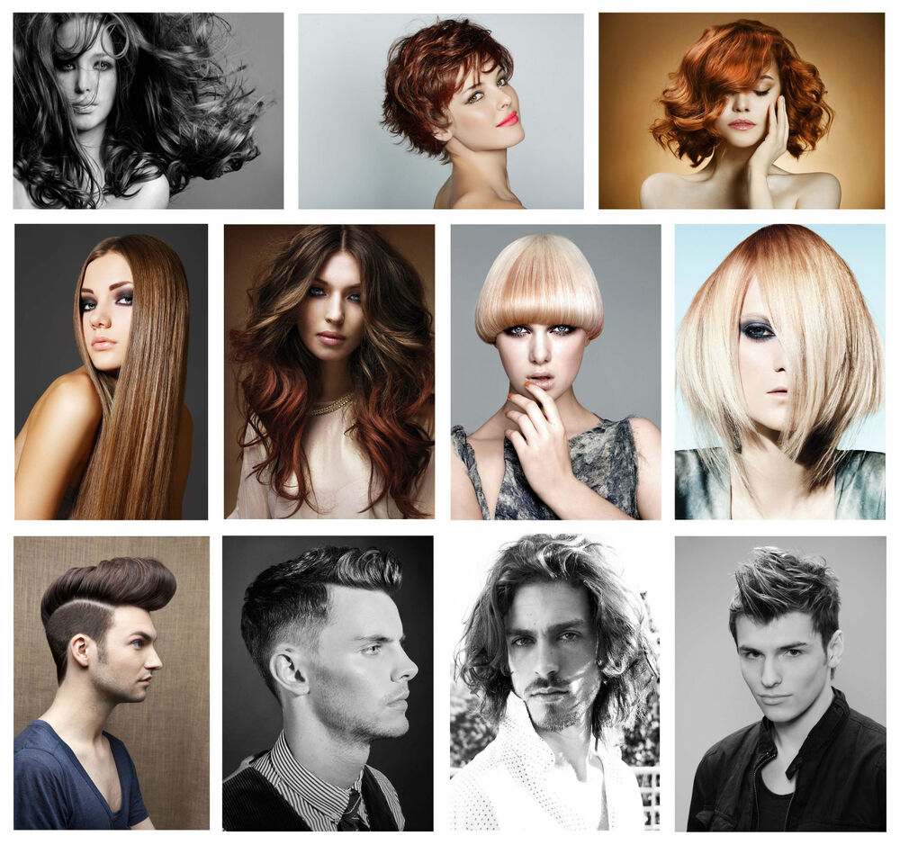 Hair Salon Hairstyles: HAIRDRESSER BARBER HAIR SALON HAIRSTYLE GIANT POSTER