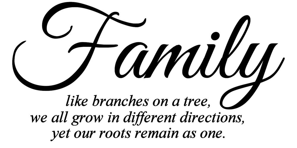 We Are Family Quotes: Family Like Branches On A Tree Vinyl Wall Art Quote Words
