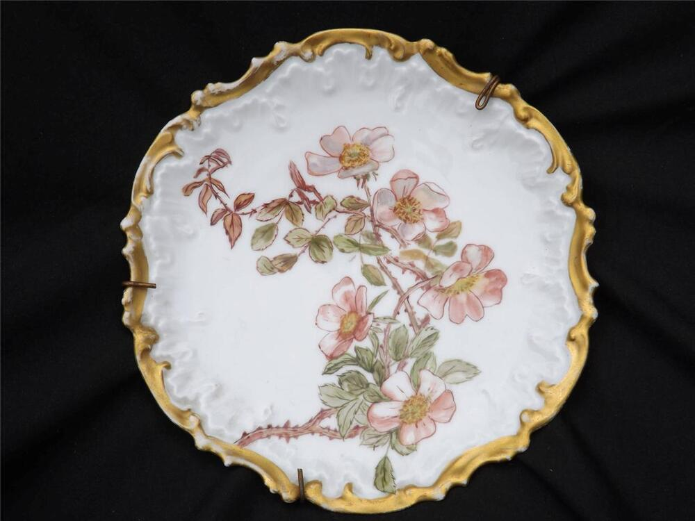Hand Painted Plates : Antique limoge hand painted french floral gilt display