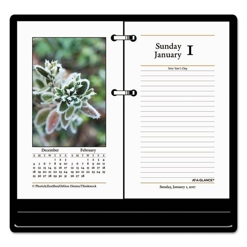 At A Glance 2017 Daily Full Color Desk Calendar Refill Only E41750