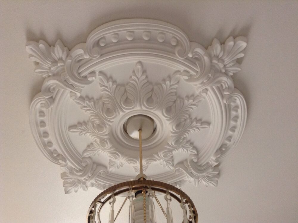 Large beautiful ornate white ceiling rose home decor for Rose home decorations