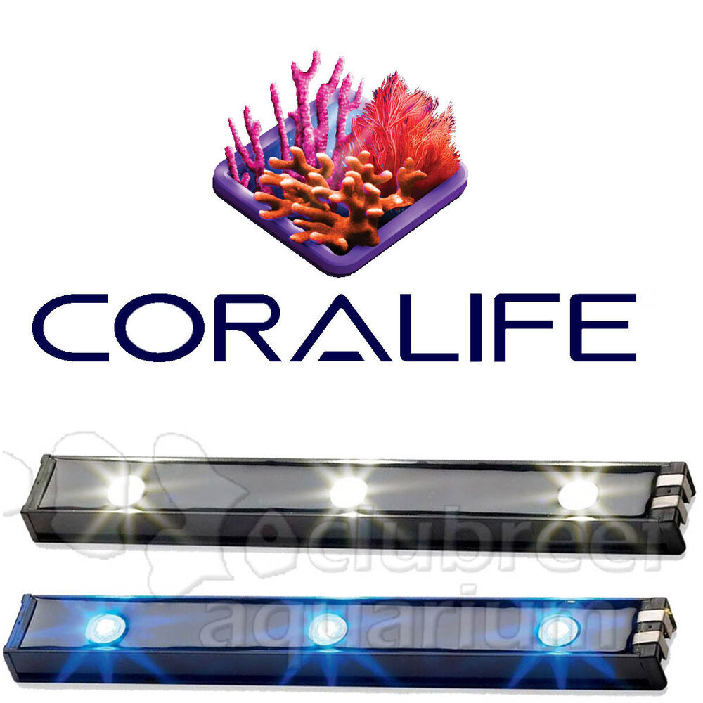 Lighting Basement Washroom Stairs: BioCube Replacement LED Light Bar White Or Blue Coral Reef