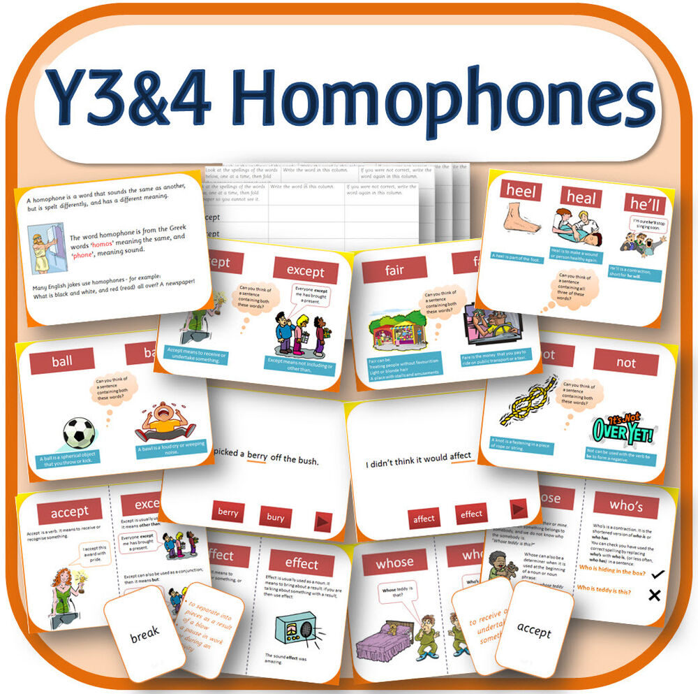 year 3 4 spelling homophones teaching resources iwb worksheets games etc on cd ebay. Black Bedroom Furniture Sets. Home Design Ideas