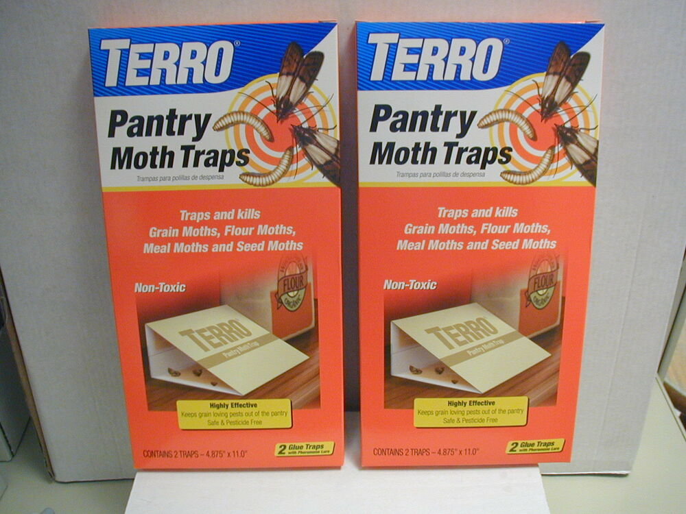 Pantry Moth Traps 2 2pks Grain Flour Meal And Seed Moths