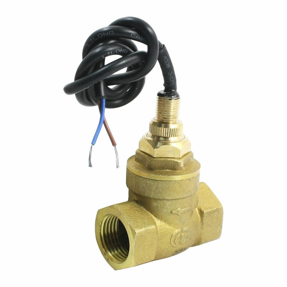 Sen db pt female thread brass paddle flow switch
