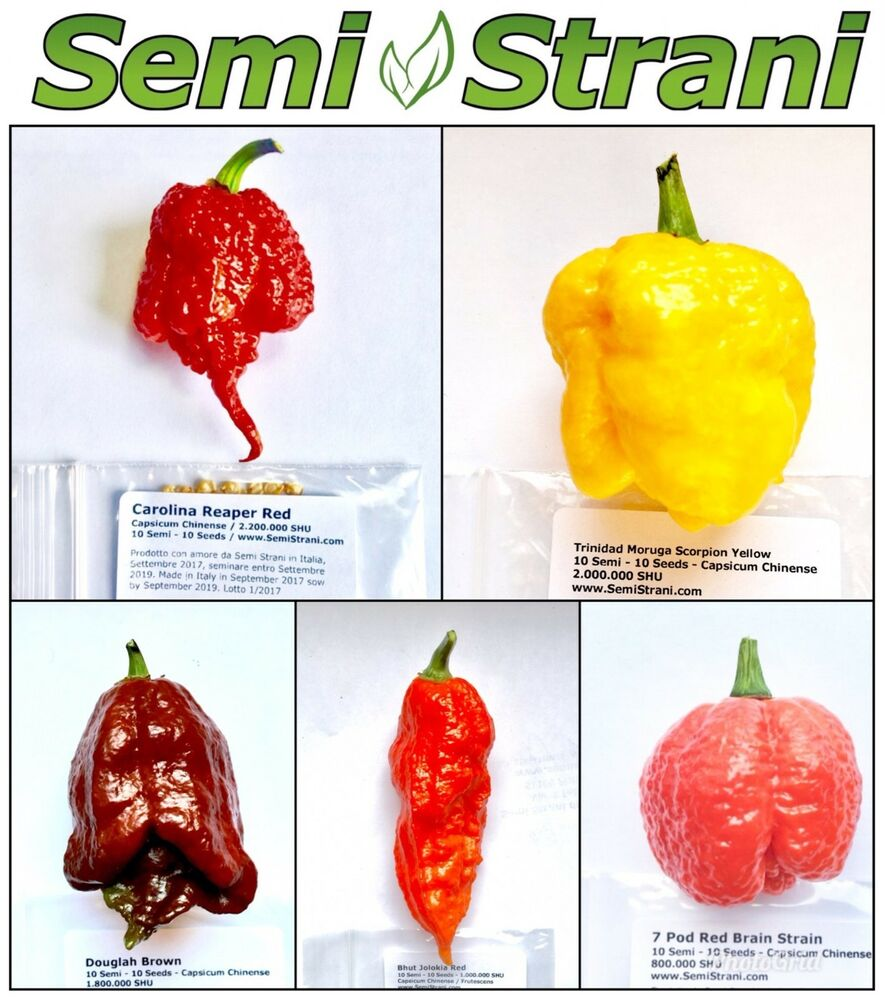 50 Seeds Of The 5 Worlds Hottest Chili Peppers Coll 5