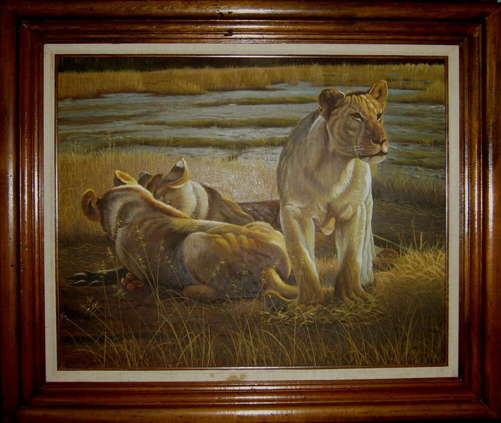 Large Original Vintage Oil Painting Kalahari King Lions