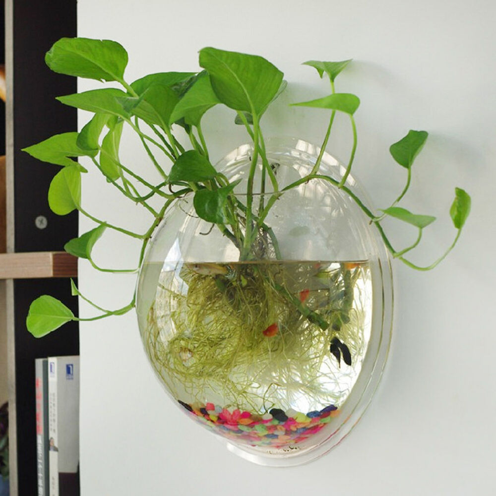 plant wall hanging bubble aquarium bowl fish tank aquarium home decoration tz2 ebay. Black Bedroom Furniture Sets. Home Design Ideas