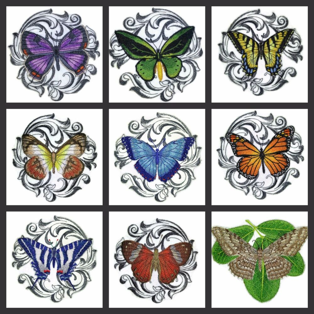 Beautiful Butterflies Art Embroidered Iron On Patches | EBay