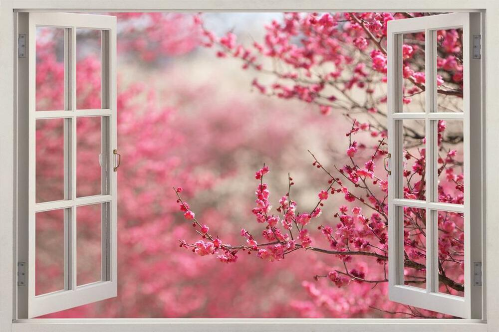 Cherry blossom 3d window view decal wall sticker home for Sticker mural 3d
