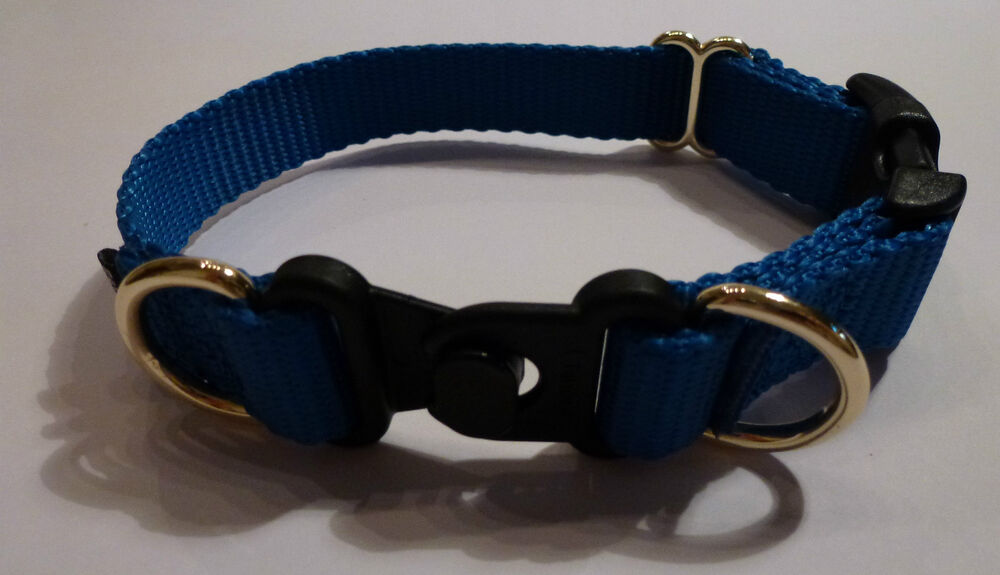 Dog Breakaway Collar Uk