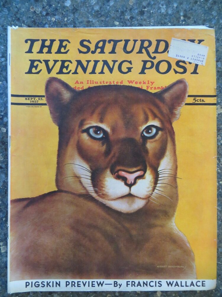 Image result for september 25 1937 saturday evening post