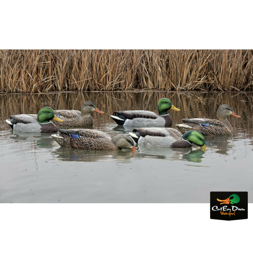 NEW ZINK AVIAN-X TOP FLIGHT FUSION MALLARD PACK DUCK ...