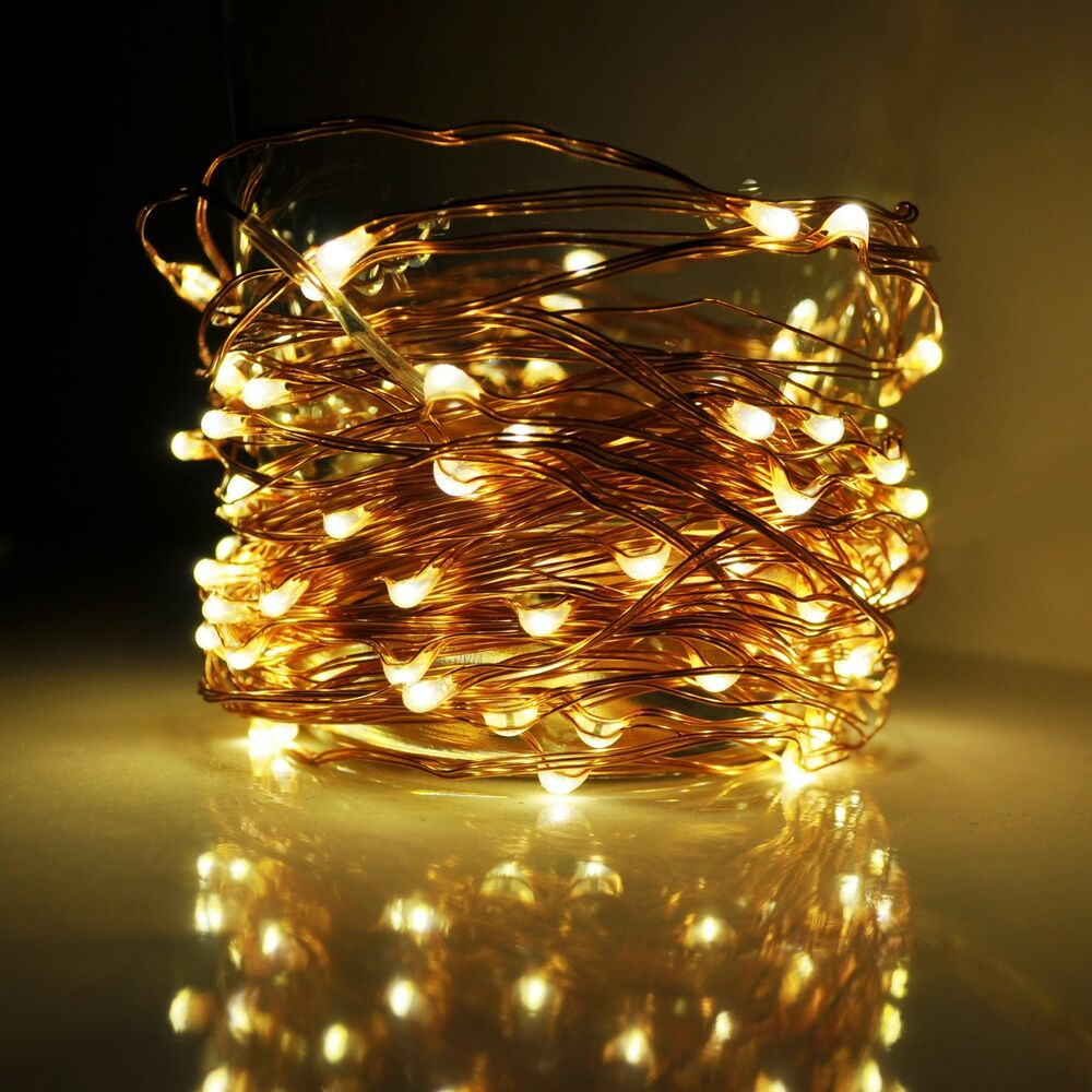Led Fairy Lights 33 Foot 100 Micro Led Lights On Copper