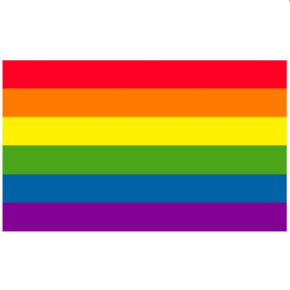 Gay Pride Flag Rainbow Flag 3 X 5 Feet 852677938342  Ebay-7047