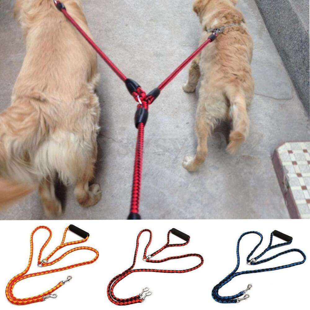 Double Lead For Walking Two Dogs