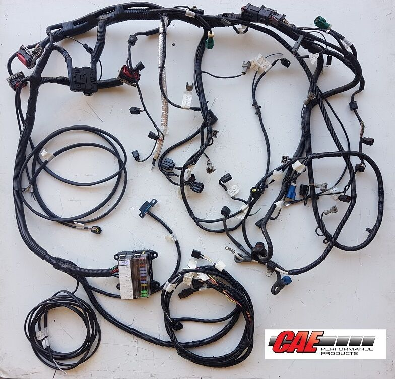 Ford V8 5 4l Ba Bf Fg Engine Conversion Wiring Harness