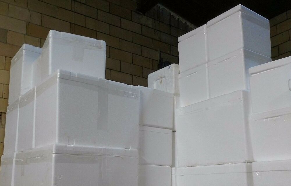Details About Insulated Styrofoam Cooler Shipping Container White Foam Box Food Cat House