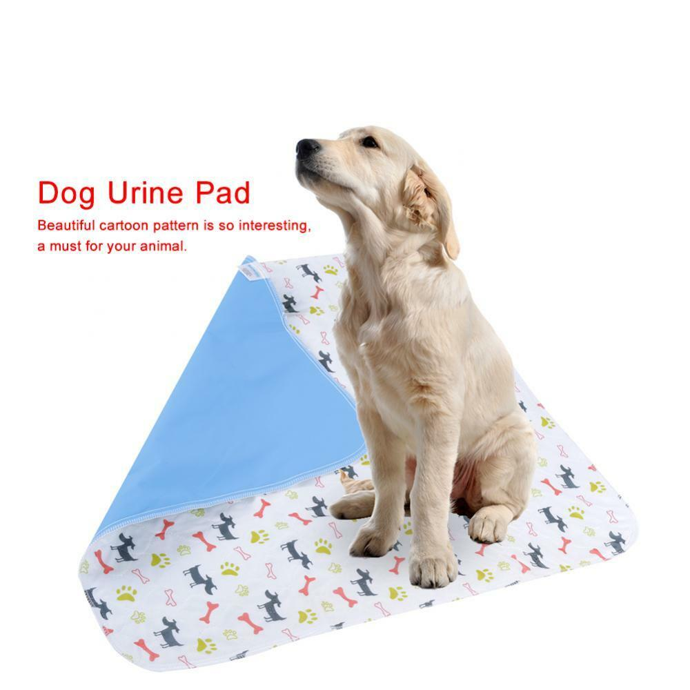 My Dog Peed On My Rug: 3 Size Washable Reusable Dog Puppy Pad Training Dog Diaper