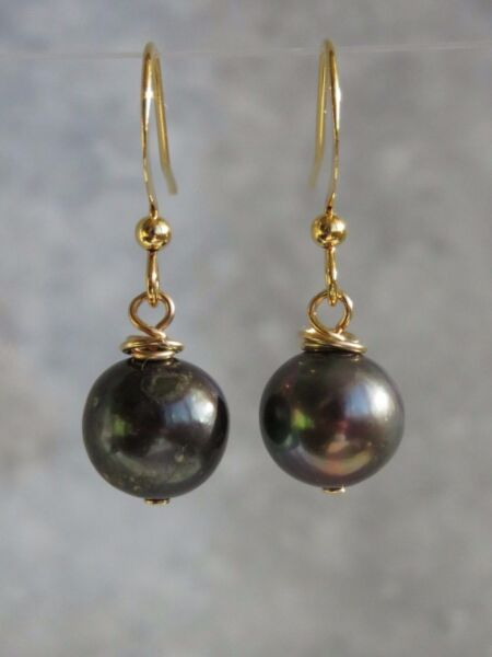 Near Round Peacock / Black Freshwater Pearl Gold Plated Hook Earrings