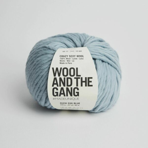 Royaume-UniWATG Wool And The Gang Fou Sexy Laine 200g 80m 79.6m - Canard Oeuf Bleu
