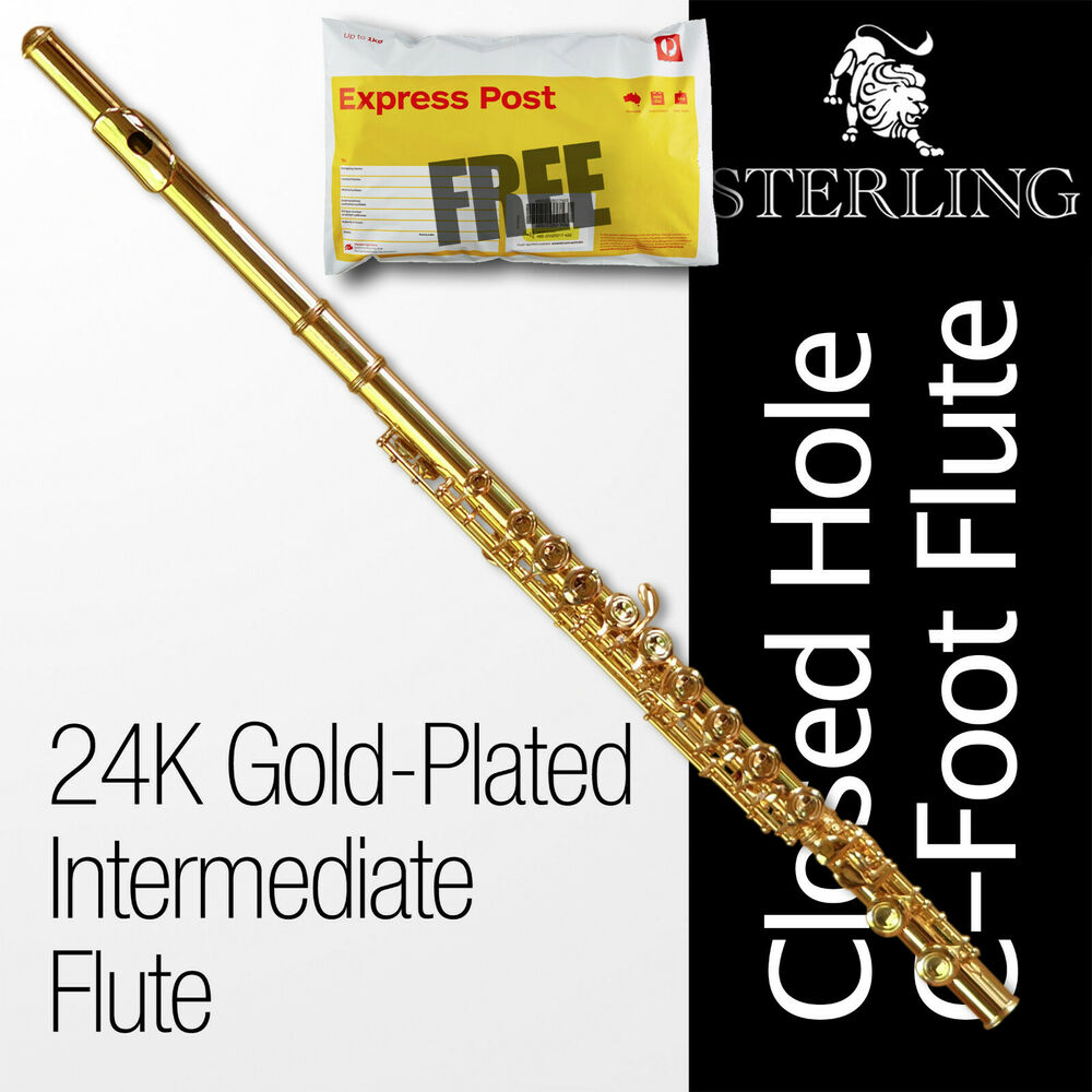Sterling FLUTE 24k Gold-Plated 16 Key C-Foot • BRAND NEW ...