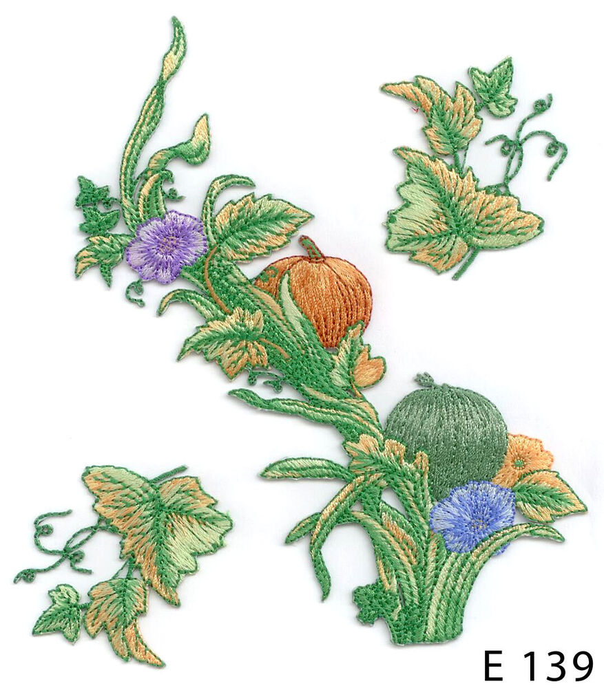 Pc pumpkin plant with leaves and flowers iron on