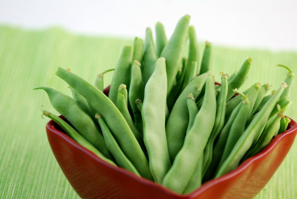 Green Bean Seed Roma Ii Green Bean Seeds Fresh Seed Free