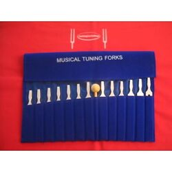 Kyпить 13 Economy Musical Tuning Forks for Piano Guitar+Mallet на еВаy.соm