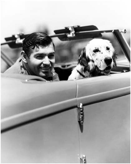Clark gable early promo still with dog in car a404 ebay