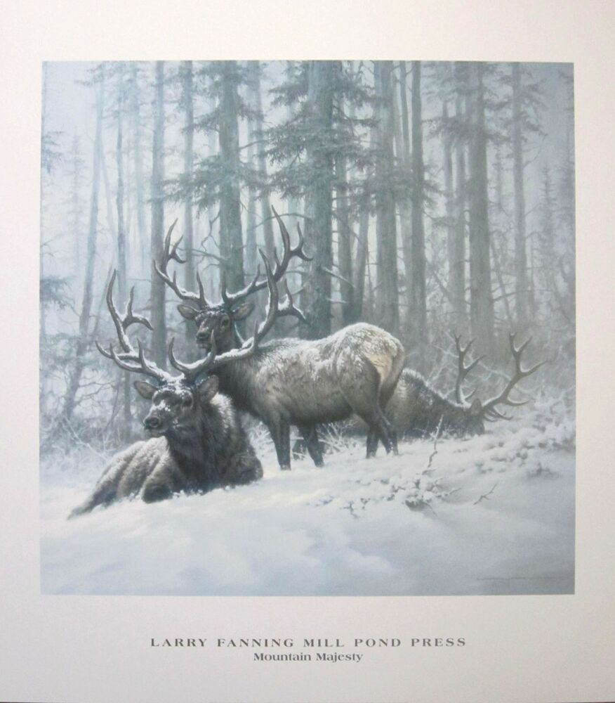 Larry fanning mountain majesty bull elk posters lot of for Mountain majesty