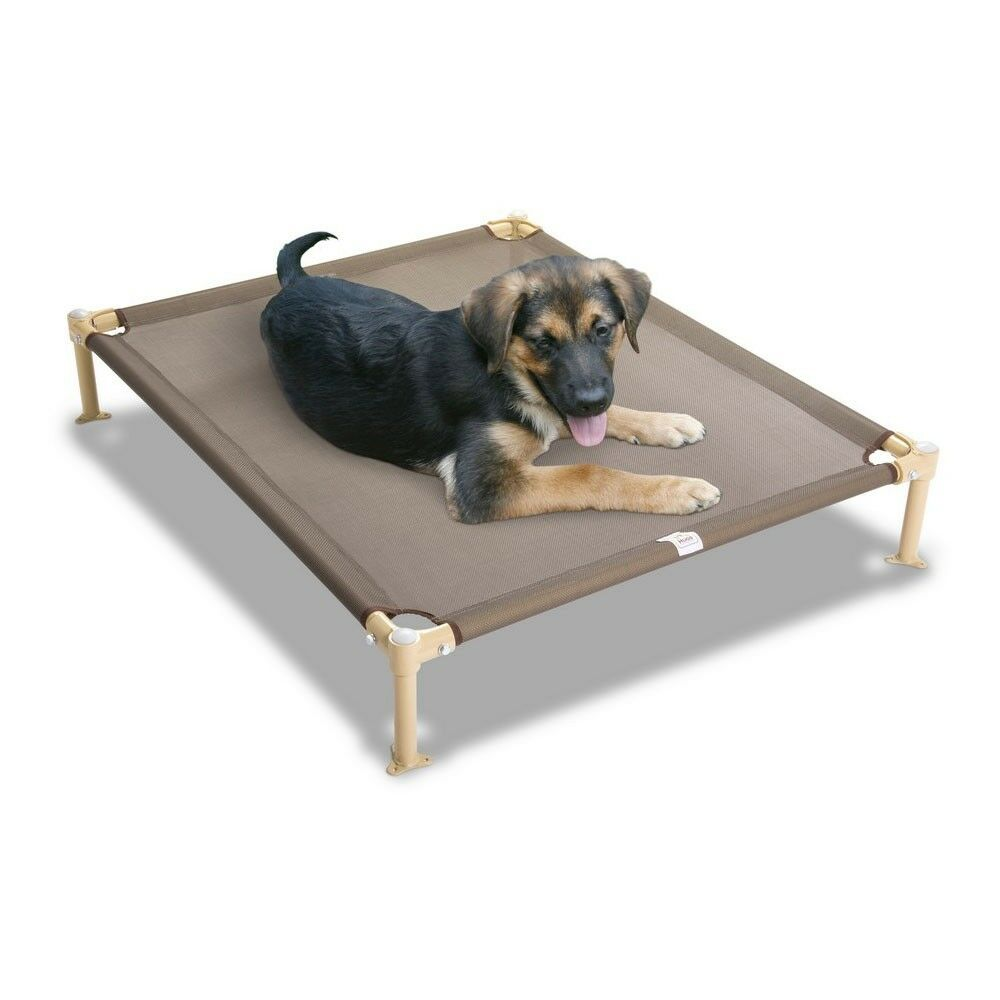 Elevated Dog Beds 28 Images Elevated Dog Bed Diy Elevated Dog Bed Raised Dog Bed Best
