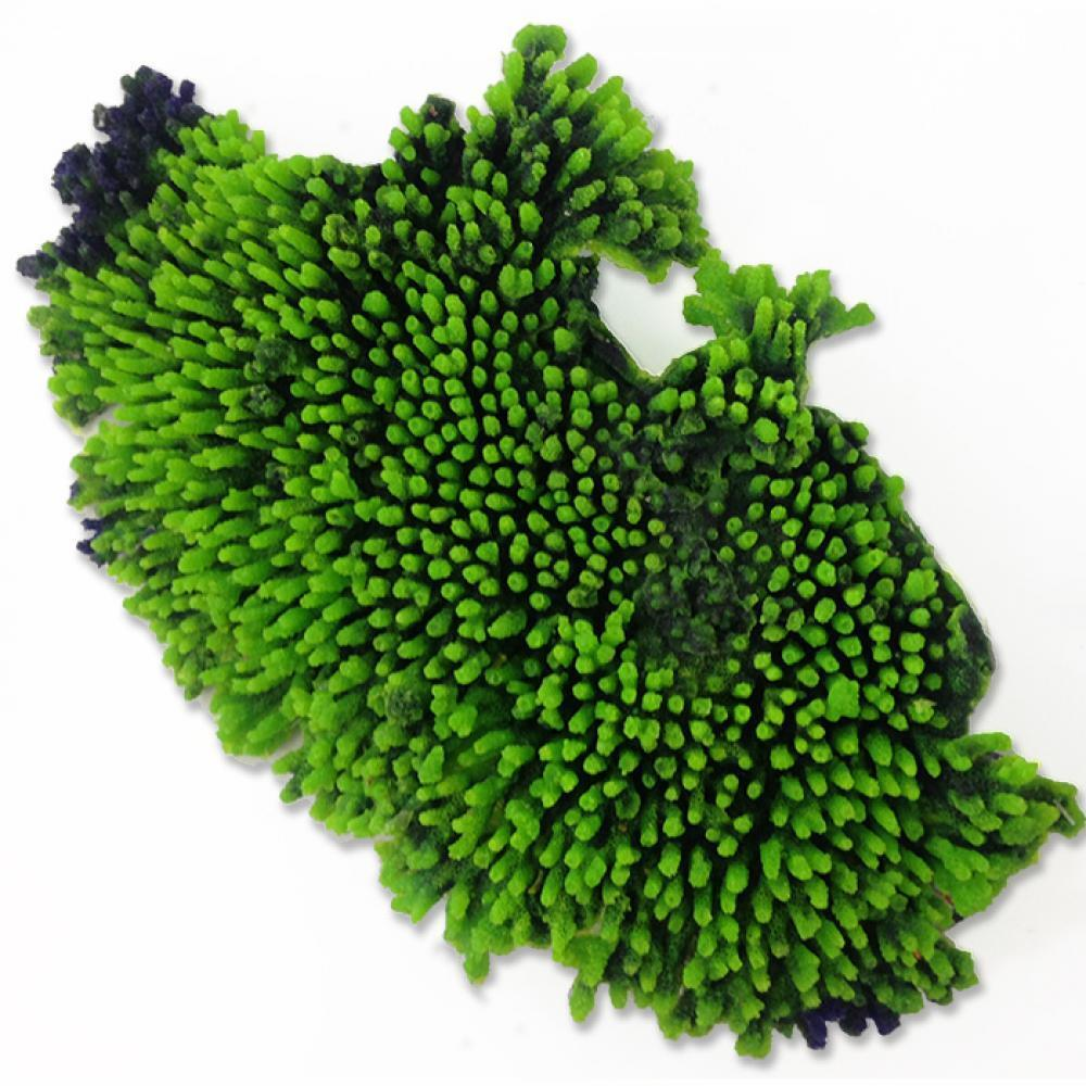 Artificial table coral green synthetic reef marine for Artificial coral reef aquarium decoration uk