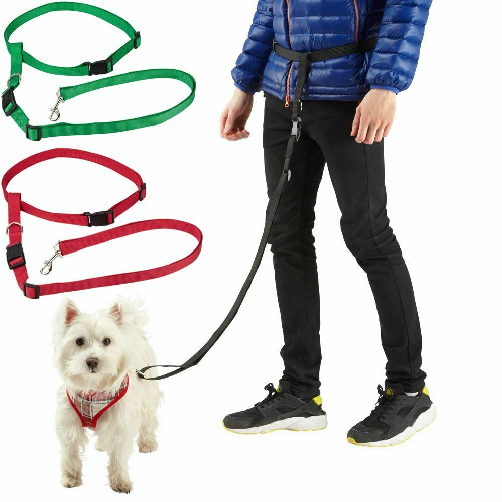 Hands Free Dog Leash For Jogging