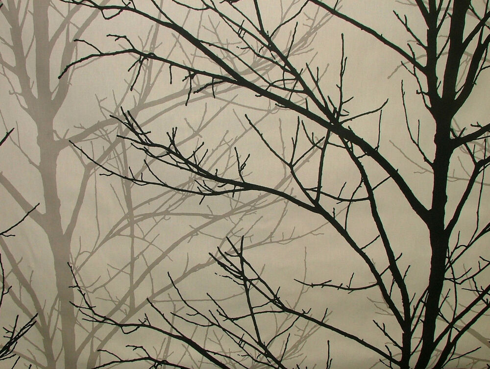 Prestigious Textiles Willow Tree Graphite 100 Cotton