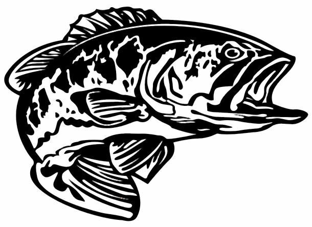 Bass decal md 5 fishing truck boat vinyl stickers ebay for Fishing stickers for trucks