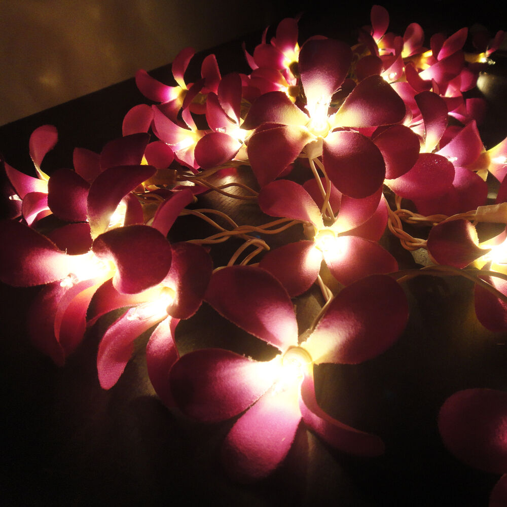 flower string lights for bedroom 35 flowers purple frangipani lights string 3 5m 18698