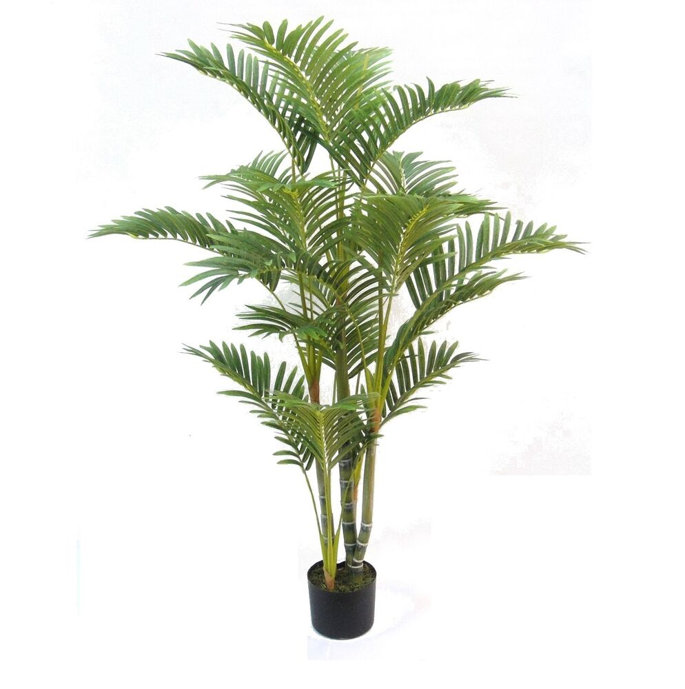 artificial deluxe 4ft kentia palm tree indoor tree premium quality ebay. Black Bedroom Furniture Sets. Home Design Ideas