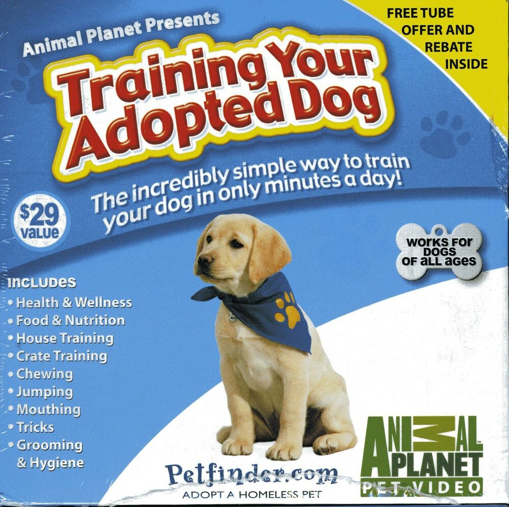 Animal Planet Training Your Adopted Dog Dvd