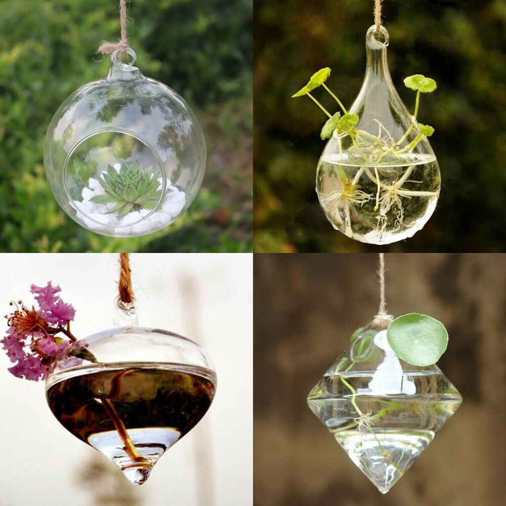 DIY Hydroponic Plant Flower Hanging Glass Vase Container