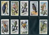 "BROOKE BOND 1957 EXCELLENT ""BIRD PORTRAITS"" NO ADDRESS - PICK YOUR CARD"