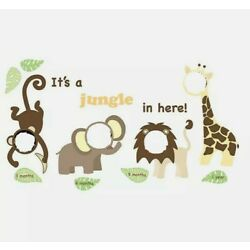 WallPops WPK0025 Jungle and Friends Photo Frame Kit
