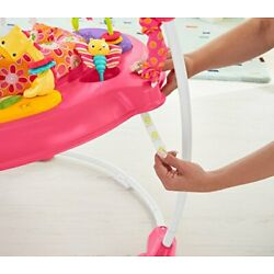 Kyпить Fisher-Price Jumperoo: Pink Petals на еВаy.соm