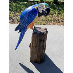 Kyпить PARROT ON DRIFTWOOD BASE  HAND CARVED WOOD TROPICAL SCULPTURE BIRD DECOR TIKI на еВаy.соm