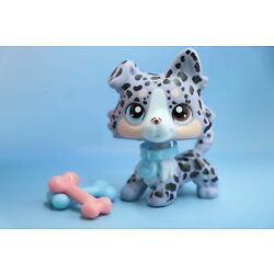 Kyпить Taylorlps lps Custom Dot Collie lps Collie Grey Spot dog With  Accessories Rare на еВаy.соm