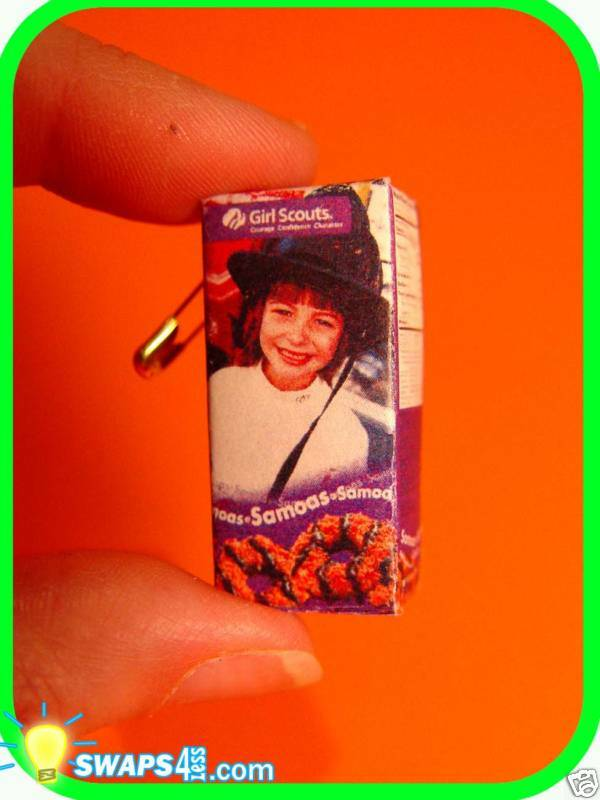 cookie box samoa girl scout swaps craft kit by