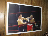 Muhammad Ali v Bonavena Fight Action POSTER Land