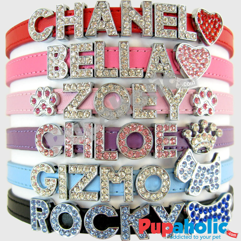Dog Collar Charm Letters